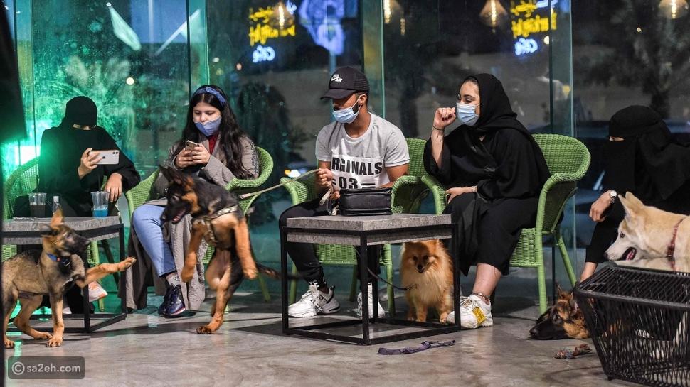 بات بإمكان عشاق الكلاب الذهاب رفقتهم إلى مقهى The parking lot