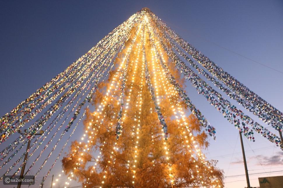 شجرة كريسماس تُدخل مدينة يابانية موسوعة جينيس: لماذا؟