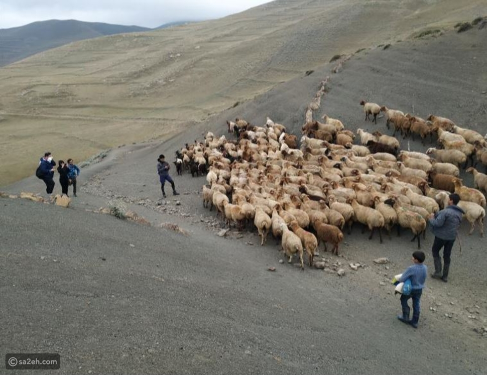 ترتفع 2000 متر فوق سطح البحر: قرية أذربيجانية غامضة يعشقها السائحون