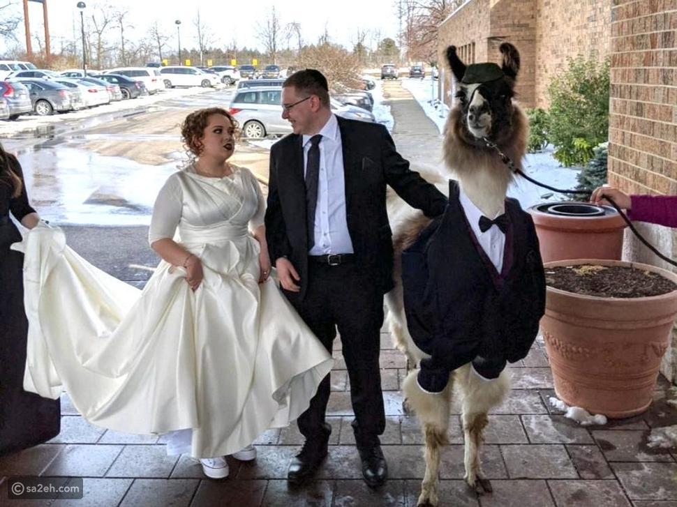 عادات زواج غريبة ستذهلكم تعرفوا عليها
