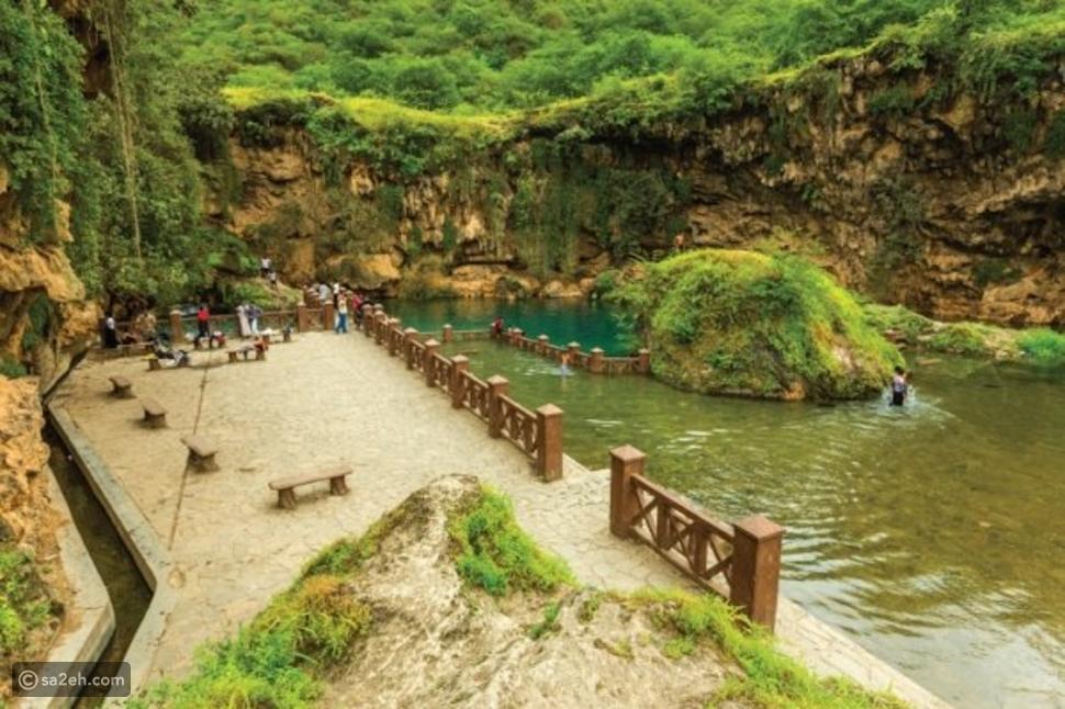 اكتشف أفضل المقومات السياحية في عُمان وشاهد أقوى عروض الدلافين