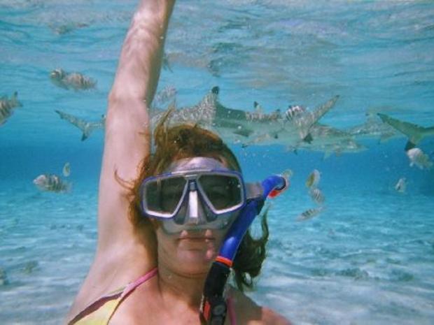 swimming with sharks هل هذا ممكن