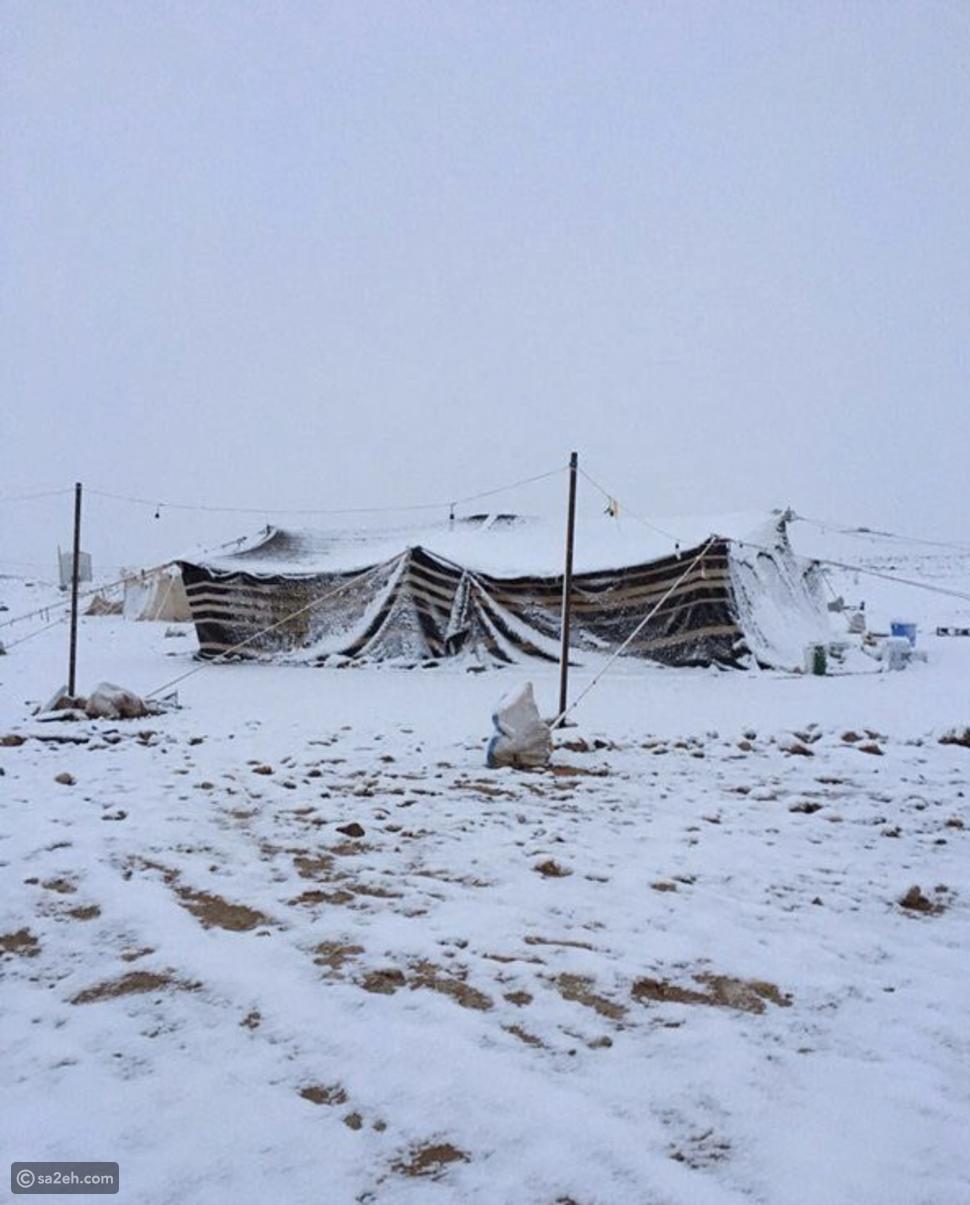 شاهد: الثلوج تكسو منطقة تبوك السعودية باللون الأبيض