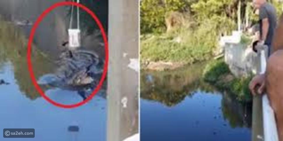 شاهد: حاول العبث مع تمساح عملاق من أجل صورة فلقنه الأخير درساً