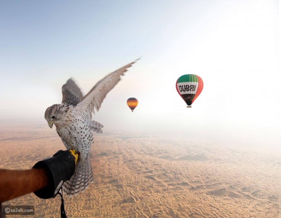جولة فوق صحراء دبي على متن منطاد برفقة الصقور